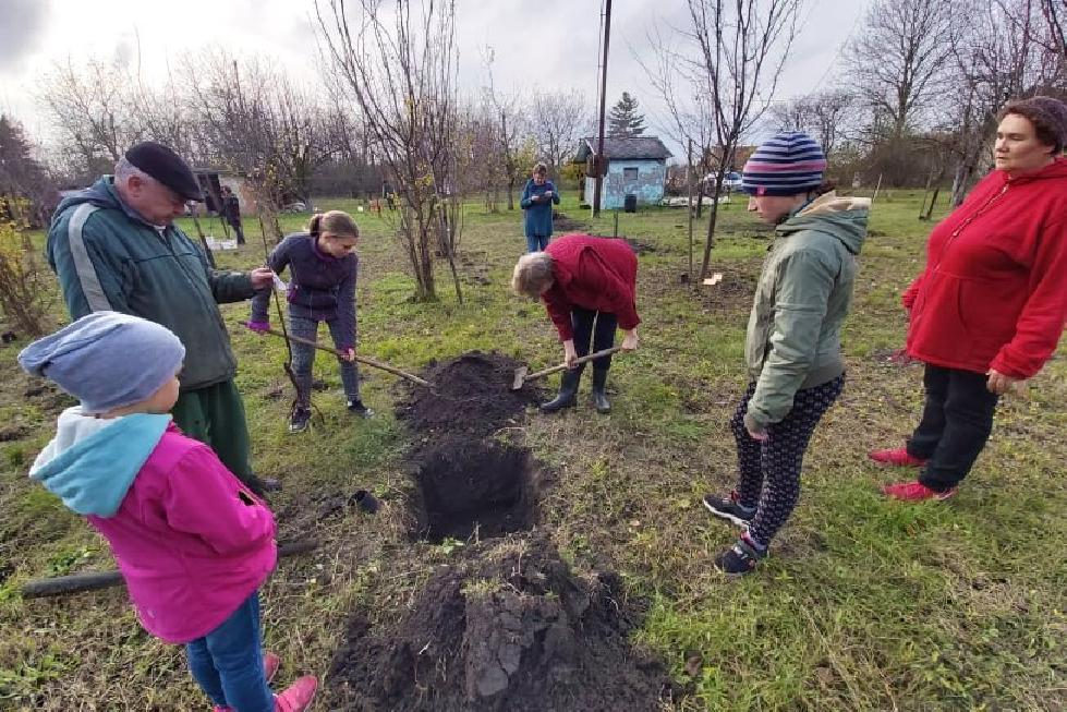 New trees and shrubs in the edible garden in Kétsoprony